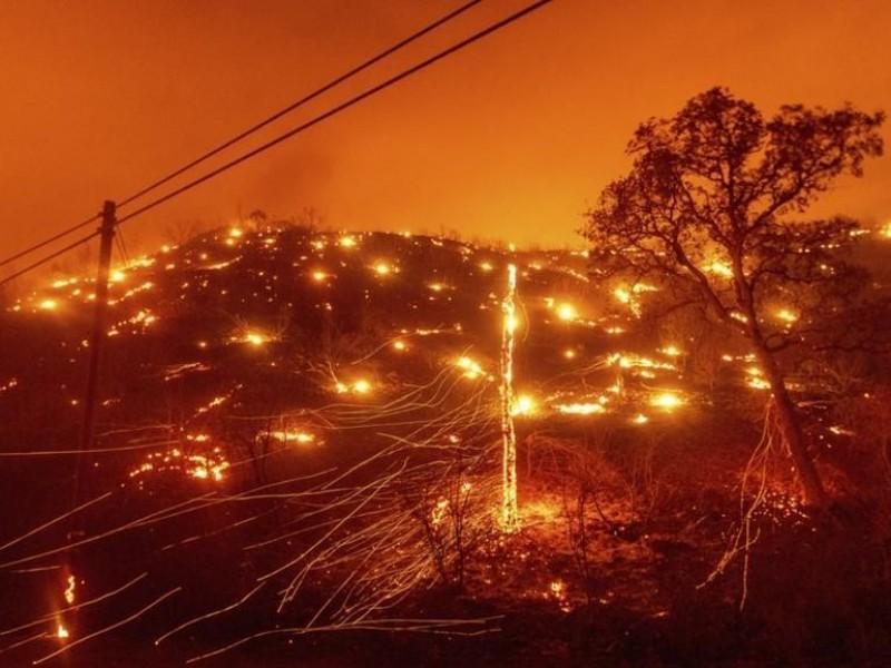 101 nayaritas fueron enviados a combatir incendios forestales en California