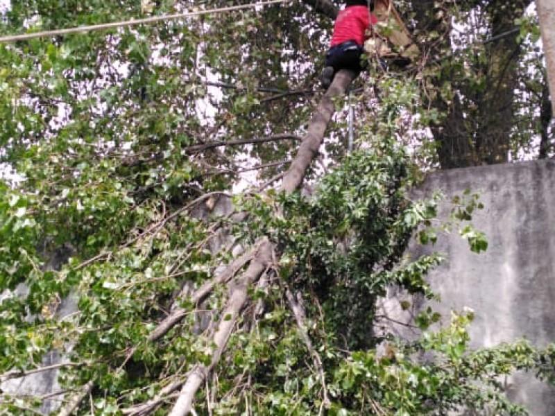 11 mil mexiquenses en riesgo por lluvias