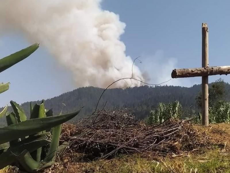 134 incendios forestales han afectado Puebla en este 2021