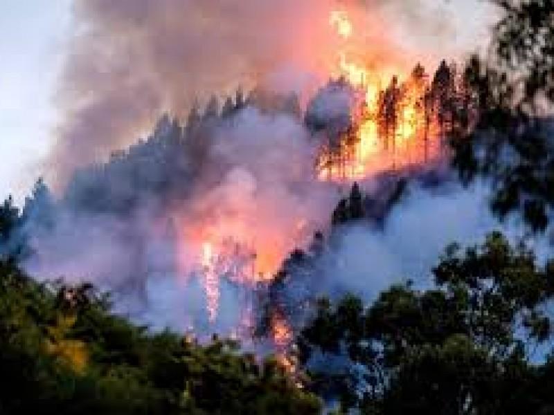 18 incendios forestales en 10 estados del país