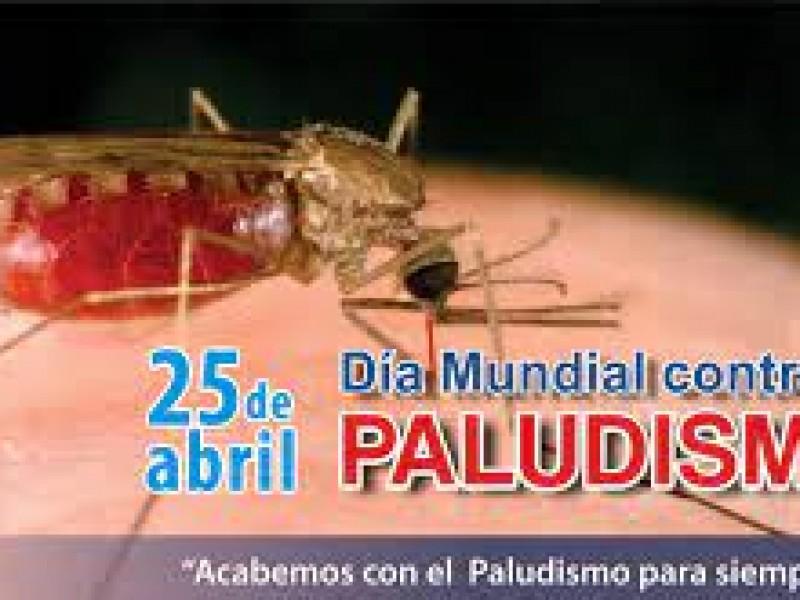 25 de abril, día mundial del paludismo