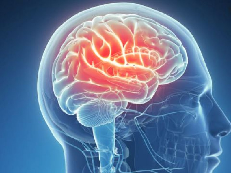 3 de cada 10 epilépticos no responden a ningún tratamiento