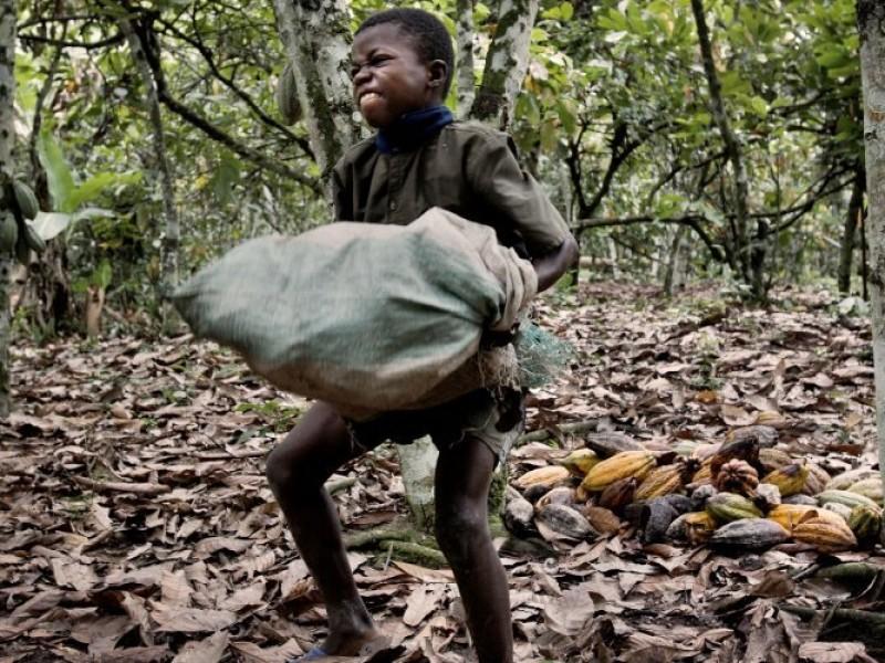40 millones de esclavos en el mundo