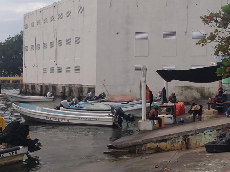 40 por ciento de pescadores sin permiso para realizar práctica