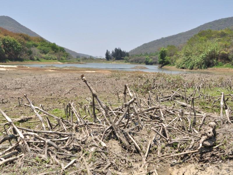 42% de municipios de Oaxaca padecen sequía: CONAGUA