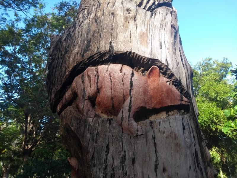 📹45 años creando extraordinarias obras en madera