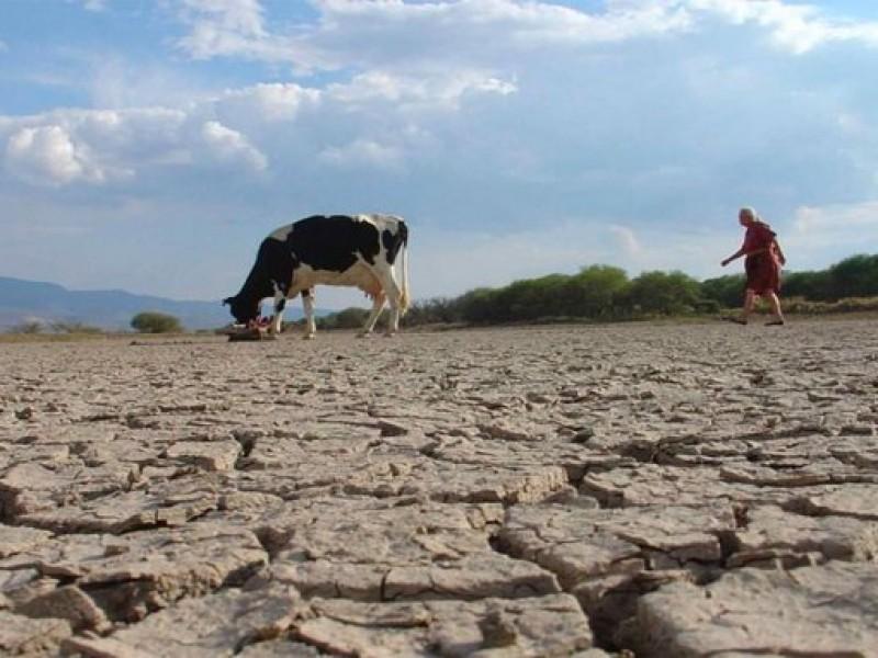 45 municipios de Oaxaca presentan sequía