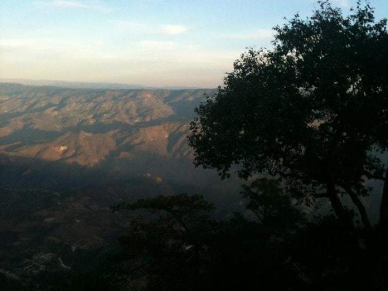480 hectáreas afectadas por incendio en la Yesca