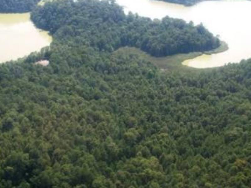 49 por ciento contaminado en Montebello: Conanp