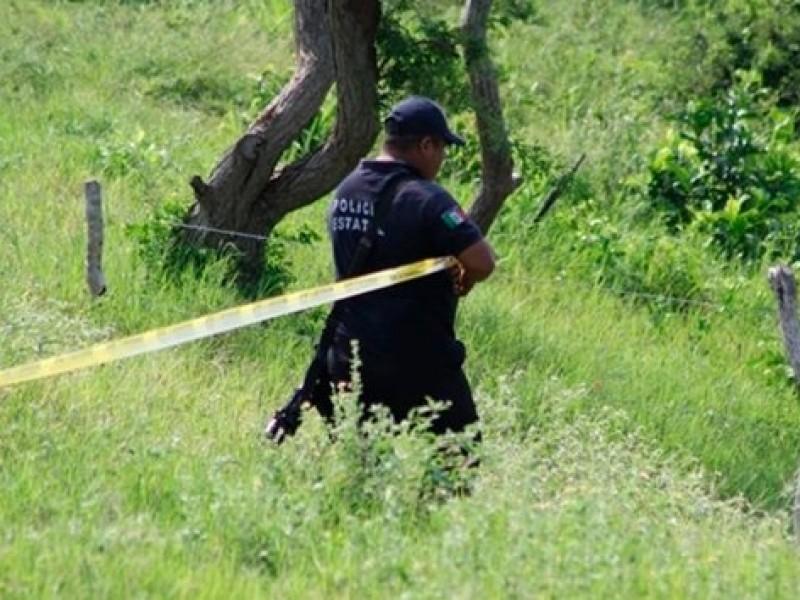 5 mil restos humanos localizados en fosas de de Arbolillo:Colectivo