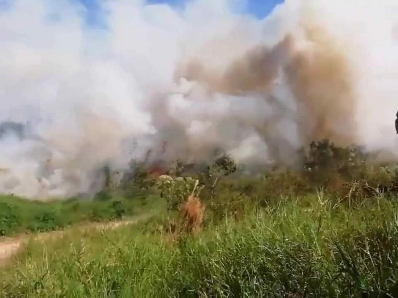 5 productores fueron afectados por incendios en Veracruz