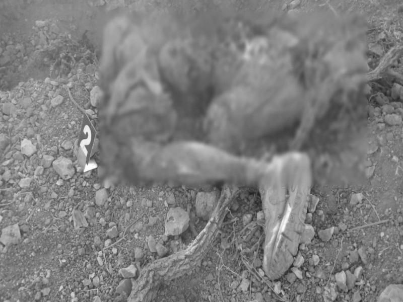 50 cuerpos encontrados en fosas