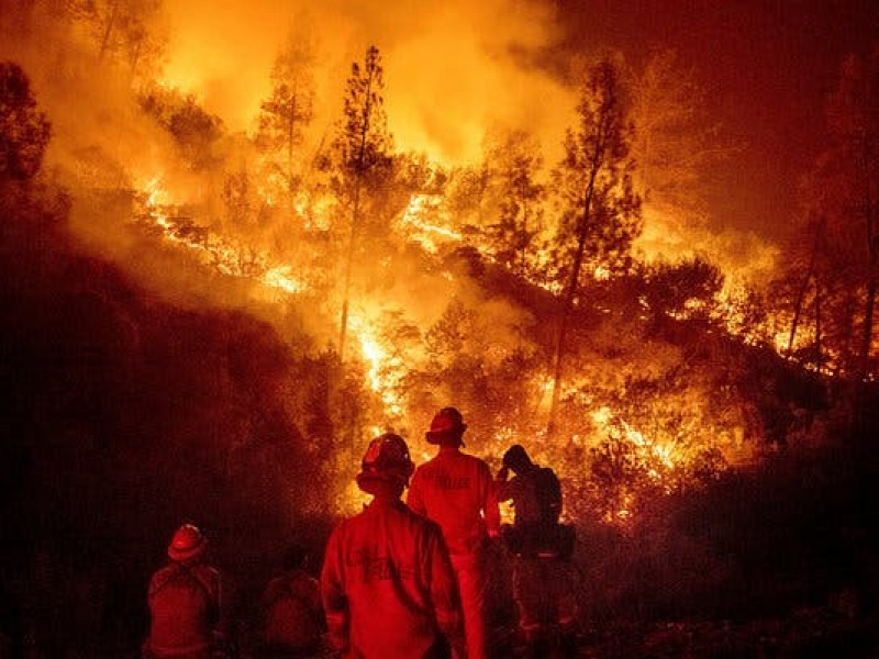 55 incendios forestales en México