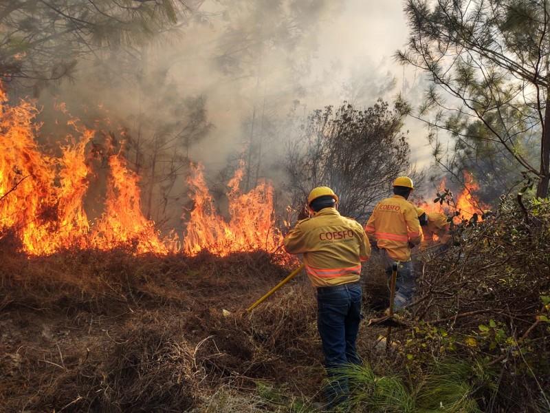 6 incendios forestales activos en Oaxaca