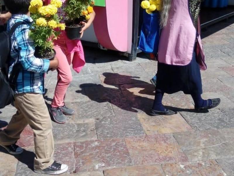 60 mil visitantes al Tapete Monumental de Atlixco