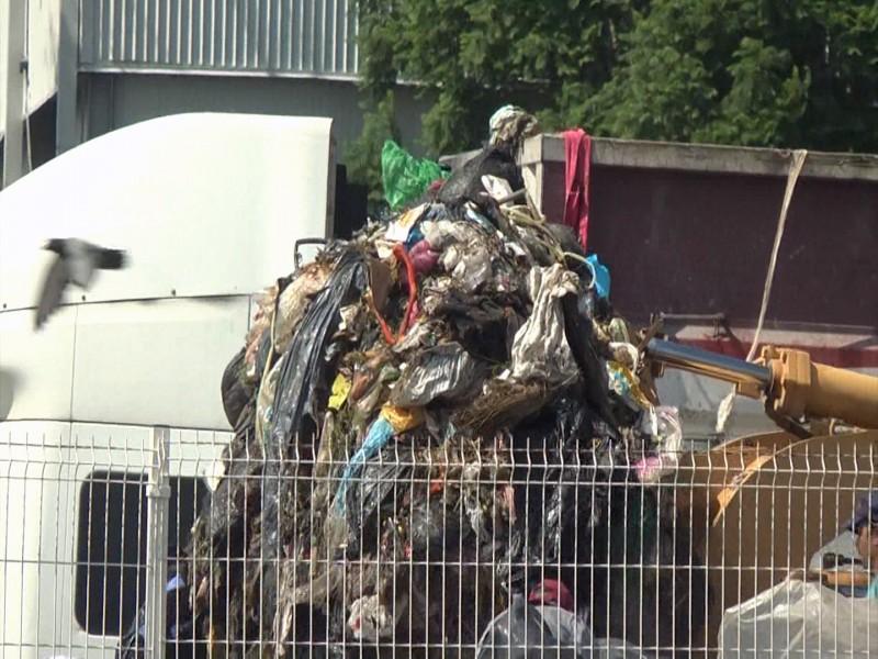 780 toneladas de plástico se generan en Jalisco