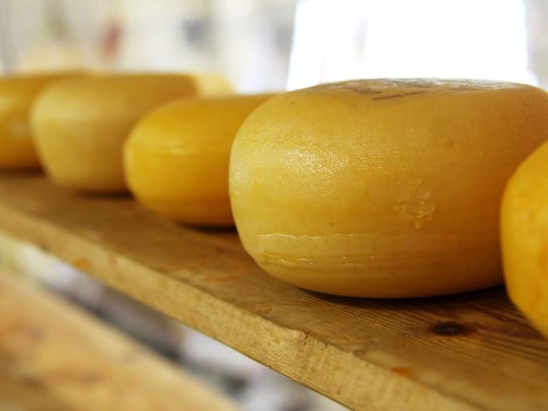 A finales de año recuperación económica para productores de queso