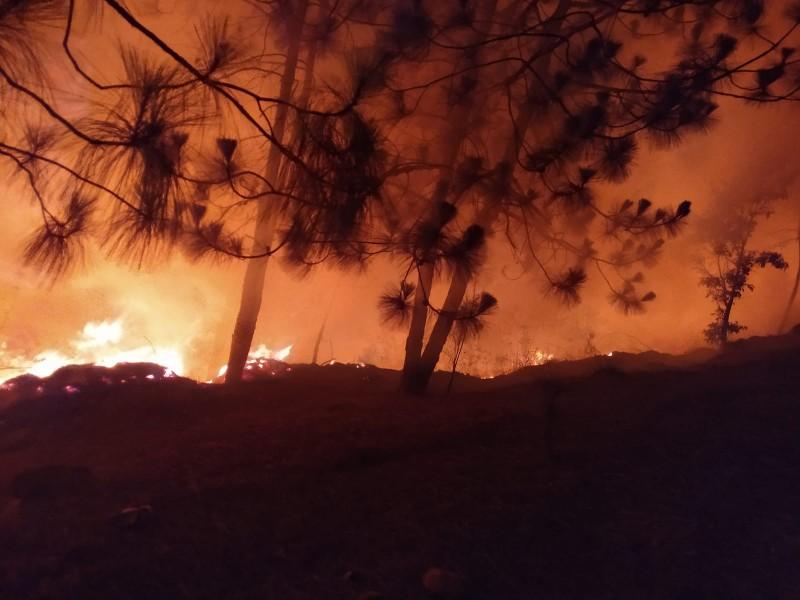 A pesar de prohibición persisten incendios forestales
