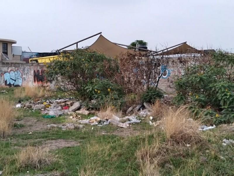 Abandonan basura en terrenos baldíos de av. división del norte