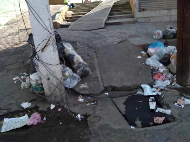 Abandonan bolsas de basura en Toluca