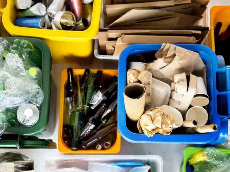 Abuela y Nieto realizan actividades de reciclaje