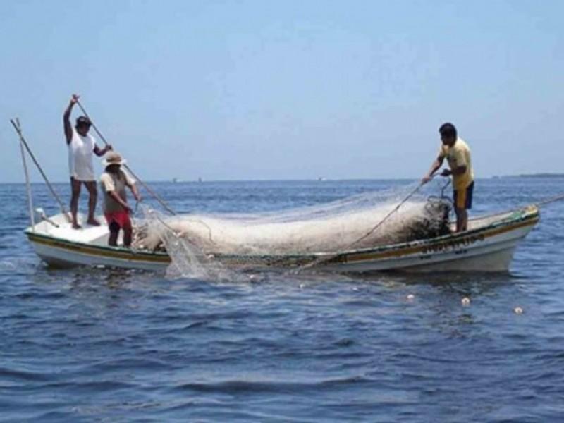 Actividad pesquera sin apoyos en Chiapas