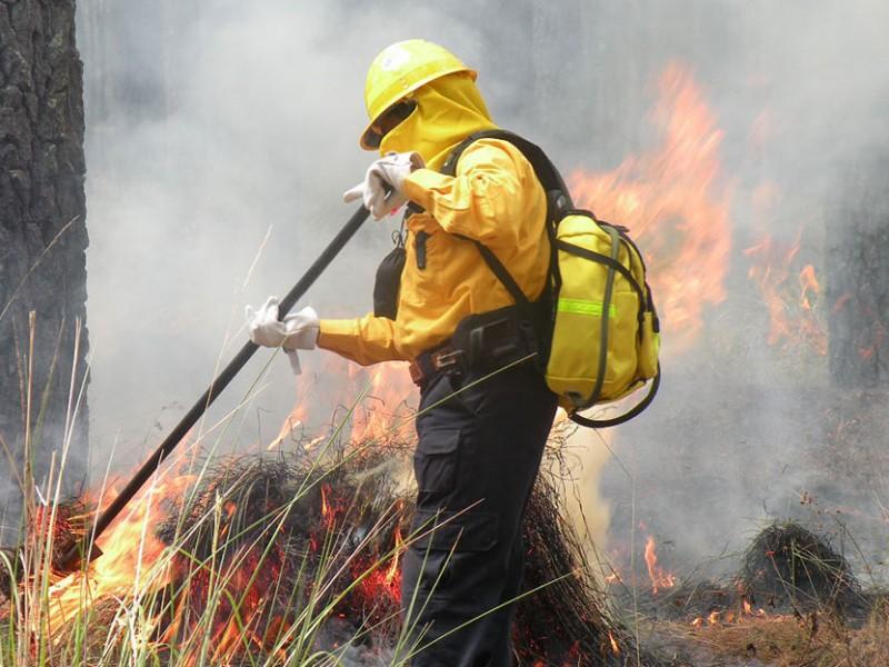 Activos 50 incendios forestales en el país