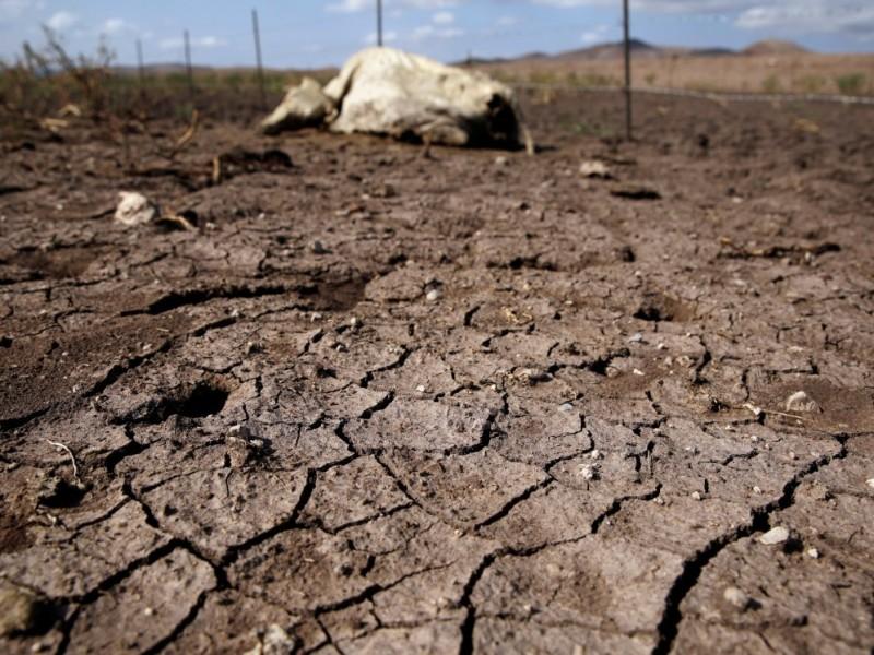 Actualmente 16 municipios del estado se encuentran en sequía extrema