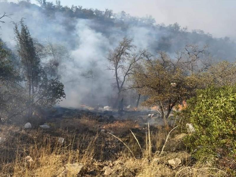 Acuden bomberos de Nogales a ayudar a sofocar incendio forestal