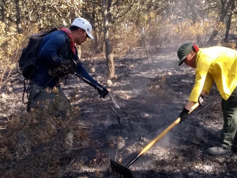 Acusan a inmobiliarias de tres incendios en Bosque del Nixticuil