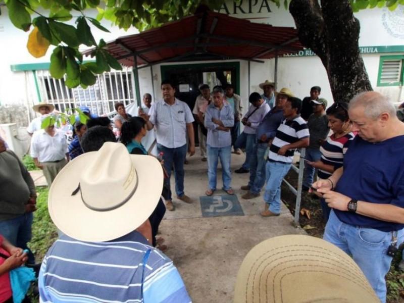 Adeuda SADER 28 mdp a productores de soya