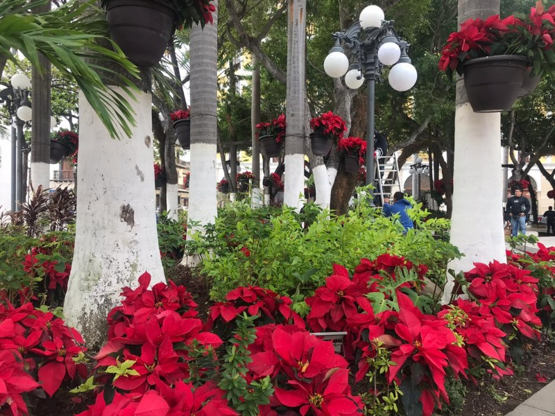 Adornan Centro Histórico de Veracruz por temporada decembrina