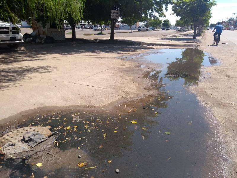 Advierten de riesgos tras brotes de aguas negras