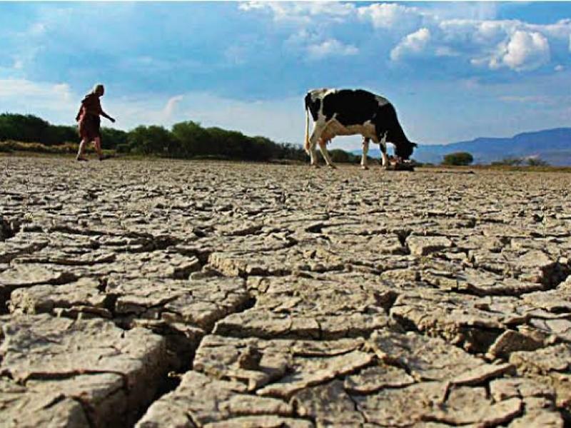 Afectaciones a nivel nacional por Sequías