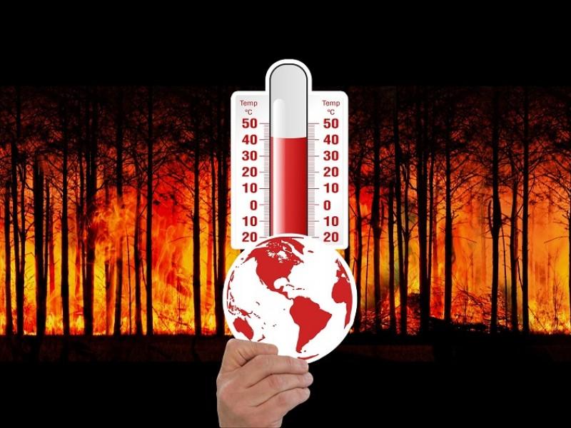 Afectaciones del cambio climático en San Luis Río Colorado