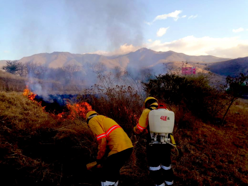 Afectaciones por incendios forestales incrementan 300% en Oaxaca durante 2021