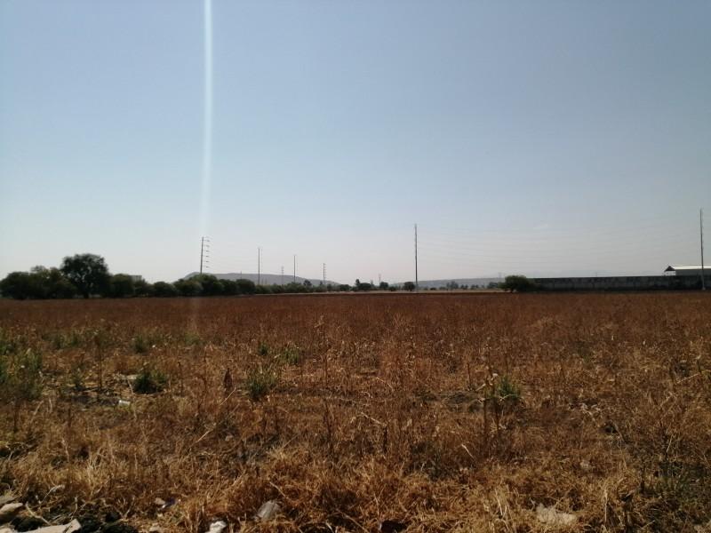Afectaciones por sequía en Querétaro