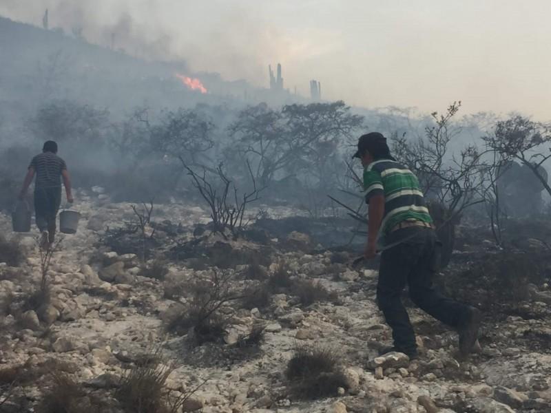 Afectan incendios 100 hectáreas en reserva de la biosfera