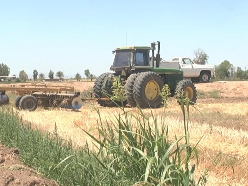 Agricultores locales se enlistan para recibir apoyo
