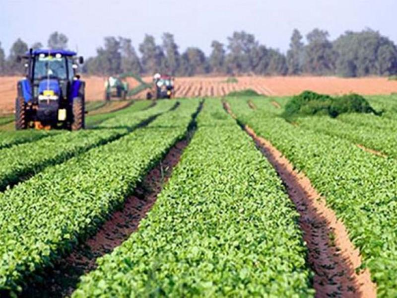 Agricultores nayaritas con difícultades para acceder a recursos