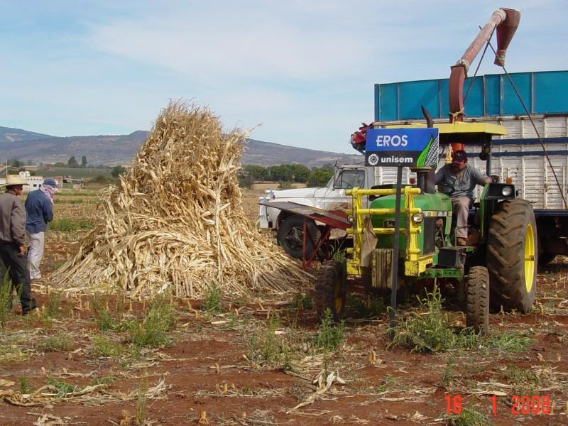 Agricultores y ejidatarios golpeados por alza en combustible