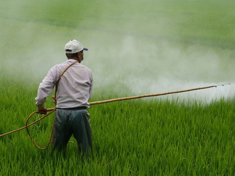 Agroquímicos ligados a enfermedades degenerativas