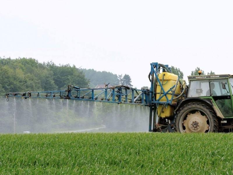 Agroquímicos repercuten a la salud de los humanos