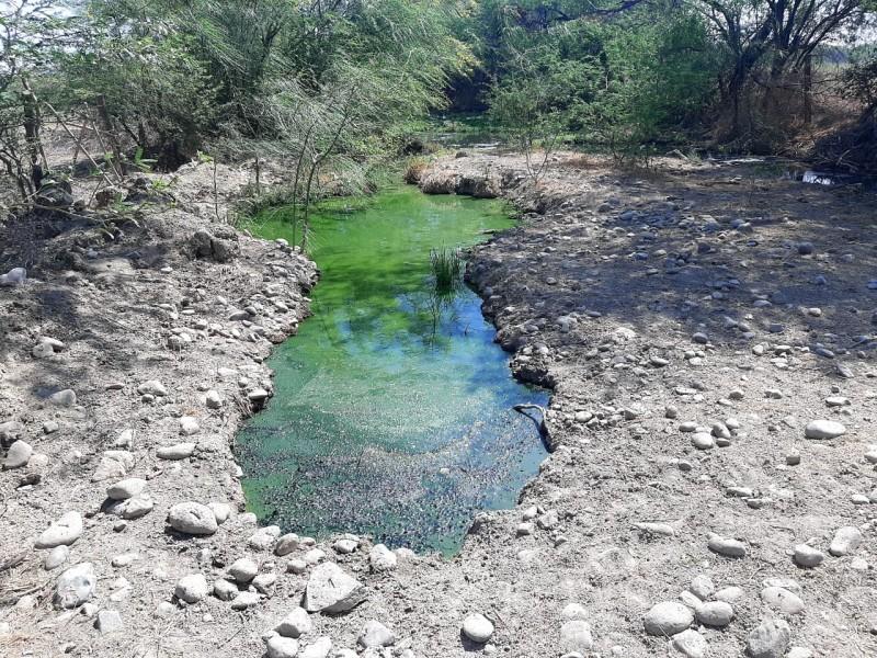 Aguas negras afectan caminos y terrenos en Flor de Azalea