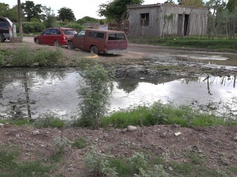 Aguas negras afectan salud y economía colonia Siglo XXI