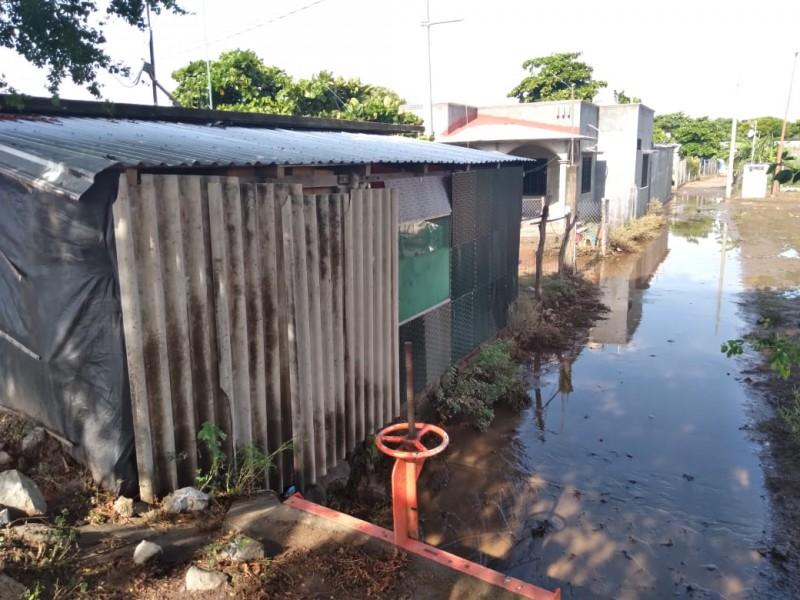 Aguas pluviales afectan a habitantes de colonia popular de Juchitán