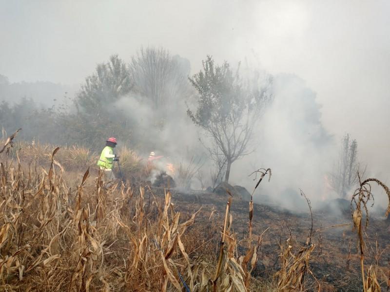 Al menos 10 viviendas siniestradas en incendio forestal en Zimatlán