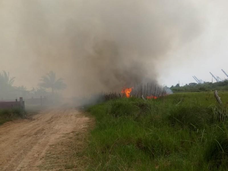 Álamo y Tuxpan con más quemas de pastizal