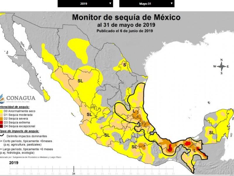 Álamos con mayor indice de sequía