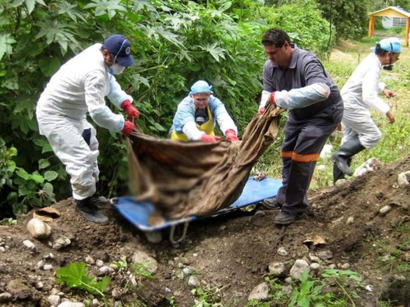 Alarmante: Ubican 222 fosas clandestinas en el país